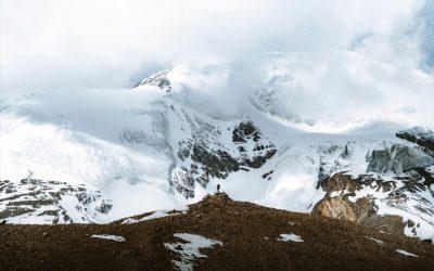 Die besten Trekkingstöcke zum Wandern