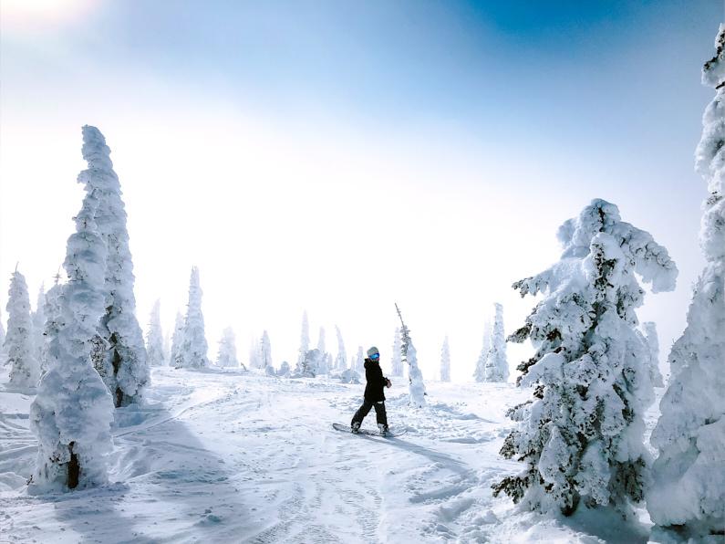 Eine hübsche junge Snowboarderin, bei einer Wintersportreise in die USA, steht im hohen Schnee mitten im Wald und grinst freudig in die Kamera. Sie trägt eine super schützende und atmungsaktive Hardshelljacke und Hardshellhose. │ Wintersport in USA, Nordamerika │ Die besten Hardshelljacken und Hardshellhosen zum Reisen und für Outdoor Abenteuer │ Standort: USA, Nordamerika, Amerika │ Abenteuer Reiseblog │ Reise- und Outdoor Ausrüstung │ Hardshell Jacken und Hosen