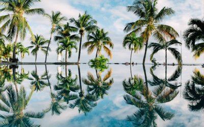 Pauschalreisen – Rechte und Entschädigungen bei Flugverspätungen, gegenüber deinem Reiseveranstalter