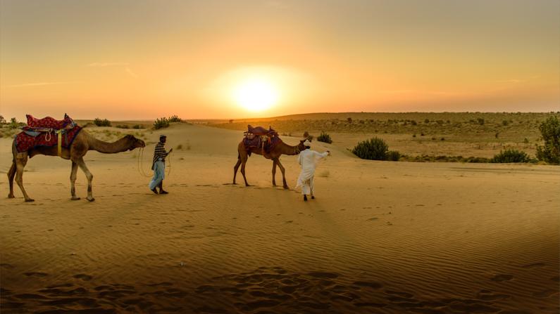 Blick auf zwei Beduine, die mit ihren Kamelen bei Sonnenuntergang durch die Wüste laufen │ Taxifahren │ Tipps und Tricks zum Fahren mit dem Taxi │ Abenteuer Reiseblog │ Reiseanleitung │ Taxis und ihre abenteuerlichen Kollegen