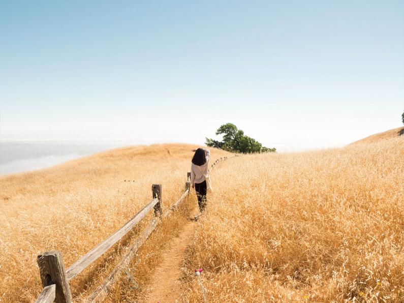 Eine hübsche junge Frau, bei einer Wanderung am Mount Tamalpais in Kalifornien, geht mit ihrer Schultertasche einen wunderschönen Bergweg entlang genießt die atemberaubend schöne Natur um sie herum │ Wandern am Mount Tamalpais in Kalifornien │ Die besten Umhängetaschen zum Reisen │ Standort: Mount Tamalpais, Marin Country, Kalifornien, USA, Nordamerika, Amerika │ Abenteuer Reiseblog │ Reise- und Outdoor Ausrüstung │ Umhängetaschen